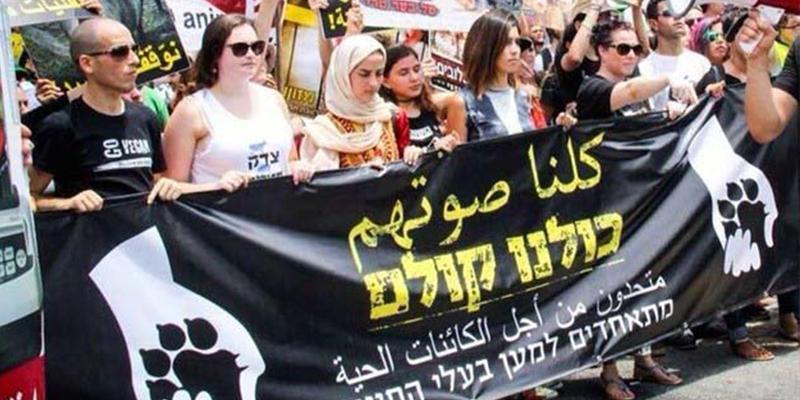 以色列的猶太人與阿拉伯人聯合為動物福祉發聲