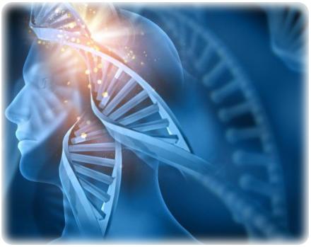 清海無上師:打坐會改變我們的DNA